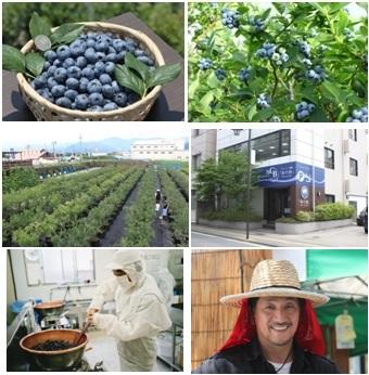 農業生産法人 株式会社未来農業計画